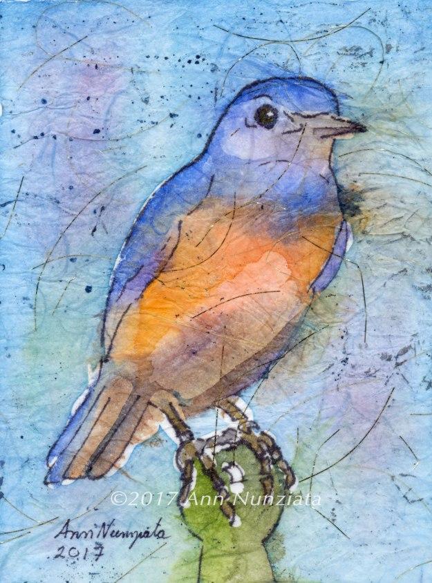 W-Bluebird-13-leveled